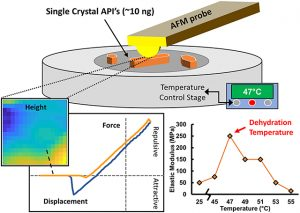 Atomic Force Microscopy to Identify Dehydration Temperatures for Small Volumes of Active Pharmaceutical Ingredients.